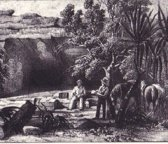 Journals of Two Expeditions of Discovery in North-West and Western Australia during the years 1837 to 1839, volume 1 of 2
