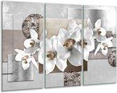 Glas schilderij Orchidee, Bloemen | Grijs, Wit | 120x80cm 3Luik | Foto print op Glas |  F007836