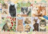 Franciens Katten Cat Stamps Premium Collection Puzzel 1000 Stukjes
