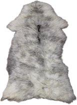 Schapenvacht van het heideschaap met grijze wol.