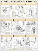 Strength Training for the Legs Poster