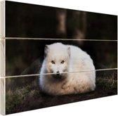 Portret van een poolvos Hout 30x20 cm - Foto print op Hout (Wanddecoratie)
