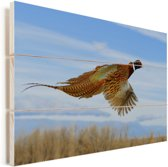 Fazant tijdens het vliegen op een heldere dag Vurenhout met planken 60x40 cm - Foto print op Hout (Wanddecoratie)