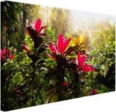 Prachtige bloemen middenin de jungle Canvas 180x120 cm - Foto print op Canvas schilderij (Wanddecoratie)