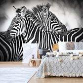 Fotobehang Black And White Zebras | V4 - 254cm x 184cm | 130gr/m2 Vlies