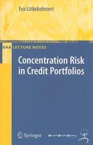 Concentration Risk in Credit Portfolios