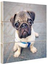 FotoCadeau.nl - Puppy ogen Hout 100x100 cm - Foto print op Hout (Wanddecoratie)