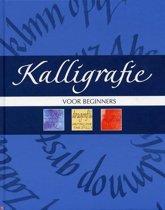 Boek Kalligrafie Voor Beginners + 3 Kalligrafiepennen van Faber Castell Pitt Zwart