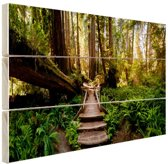 Trap van gevallen bomen in jungle Hout 80x60 cm - Foto print op Hout (Wanddecoratie)