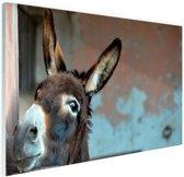 FotoCadeau.nl - Ezel Glas 120x80 cm - Foto print op Glas (Plexiglas wanddecoratie)