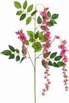 Europalms Wisteria Branch, roze