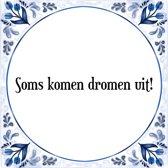 Tegeltje met Spreuk (Tegeltjeswijsheid): Soms komen dromen uit! + Kado verpakking & Plakhanger