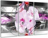 Glas schilderij Orchidee, Bloemen | Grijs, Paars | 120x80cm 3Luik | Foto print op Glas |  F007816