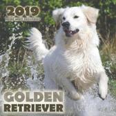 Golden Retriever 2019 Mini Wall Calendar