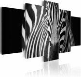 Schilderij - Zebra, Zwart-Wit, 5luik