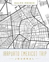 Irapuato (Mexico) Trip Journal