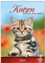Katten Kalender 2020
