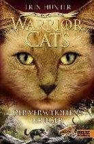 Warrior Cats Staffel 4/05. Zeichen der Sterne. Der verschollene Krieger