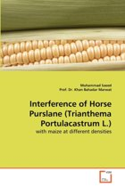 Interference of Horse Purslane (Trianthema Portulacastrum L.)
