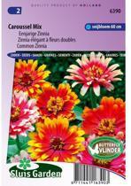 Sluis Garden Zinnia Caroussel Mix