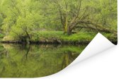 De Thaya rivier en bossen in het Nationaal Park Thayatal in Oostenrijk Poster 180x120 cm - Foto print op Poster (wanddecoratie woonkamer / slaapkamer) XXL / Groot formaat!