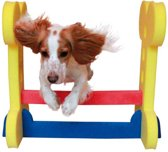 Dog Agility Hondentraining - Horde