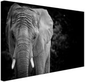 FotoCadeau.nl - Olifant zwart-wit Canvas 80x60 cm - Foto print op Canvas schilderij (Wanddecoratie)