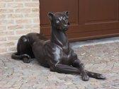 Bronzen Beeld: Hond
