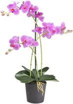 HTT Decorations – Kunstplant Orchidee / Phalaenopsis 3-tak roze H63cm