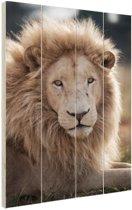 FotoCadeau.nl - Witte Leeuw  Hout 80x120 cm - Foto print op Hout (Wanddecoratie)