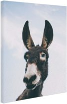 Close-up ezel Canvas 40x60 cm - Foto print op Canvas schilderij (Wanddecoratie woonkamer / slaapkamer) / Dieren Canvas Schilderij