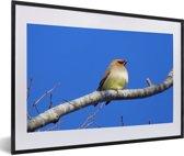 Foto in lijst - Japanse pestvogel onder een knalblauwe lucht fotolijst zwart met witte passe-partout 60x40 cm - Poster in lijst (Wanddecoratie woonkamer / slaapkamer)