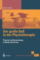 Der Gro e Ball in Der Physiotherapie