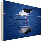Steltkluut in donkerblauw water Vurenhout met planken 30x20 cm - klein - Foto print op Hout (Wanddecoratie)
