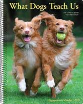 What Dogs Teach Us 2020 Engagement Calendar