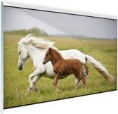 FotoCadeau.nl - Paard en veulen rennen Glas 60x40 cm - Foto print op Glas (Plexiglas wanddecoratie)