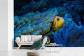 Fotobehang vinyl - Blauw anemoon rondom een Clown vis breedte 420 cm x hoogte 280 cm - Foto print op behang (in 7 formaten beschikbaar)