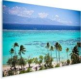 Palmen op de kust van Moorea in Frans-Polynesië Plexiglas 30x20 cm - klein - Foto print op Glas (Plexiglas wanddecoratie)