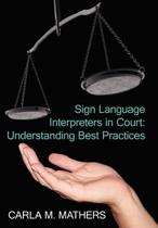 Sign Language Interpreters in Court