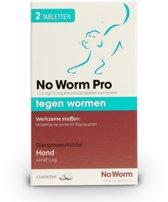 Exil No Worm Pro - Hond - 2 Tabletten