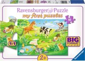 Ravensburger Schattige jonge dieren - Vloerpuzzel - 16 Stukjes