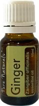 Healing - Gember 10 ml - etherische olie