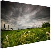 Weide voor een storm Canvas 80x60 cm - Foto print op Canvas schilderij (Wanddecoratie)