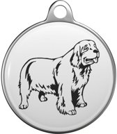 Clumber Spaniel Tommy Tag C030