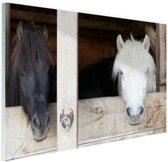 Paarden in de stal Glas 90x60 cm - Foto print op Glas (Plexiglas wanddecoratie)