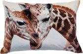 Sierkussen Giraffe Print - 60 x 40 cm - heerlijk zacht fluweel - Kussen met ritssluiting incl. polyester vulling - giraffes