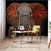 Fotobehang Elephant   VEM - 104cm x 70.5cm   130gr/m2 Vlies