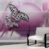 Fotobehang - Fly, Butterfly!