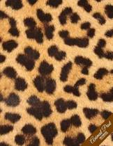 Animal Print Notebook Collection