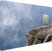 FotoCadeau.nl - Berggeit bij een klif  Canvas 60x40 cm - Foto print op Canvas schilderij (Wanddecoratie)